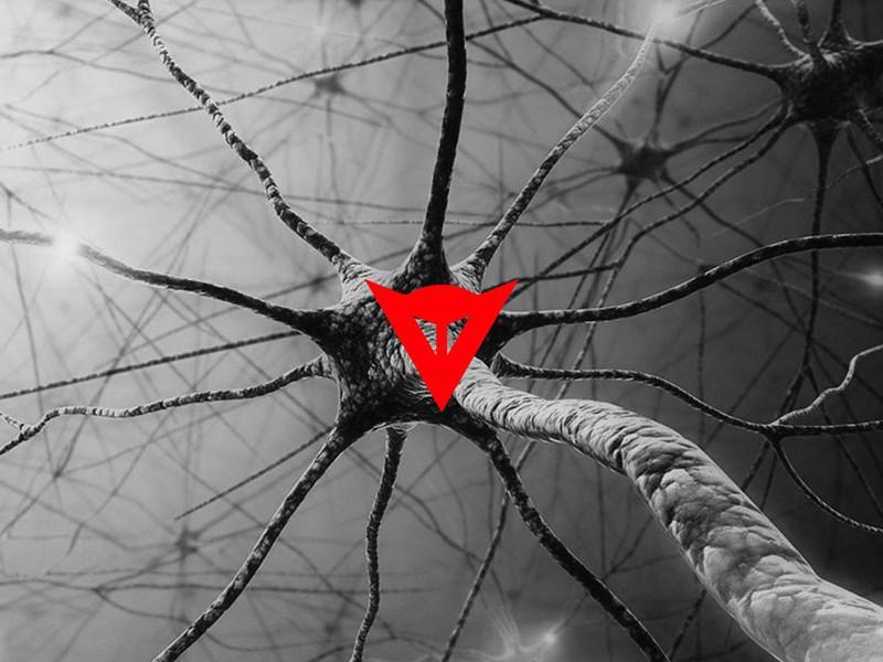 Dainese D-Air Gehirn